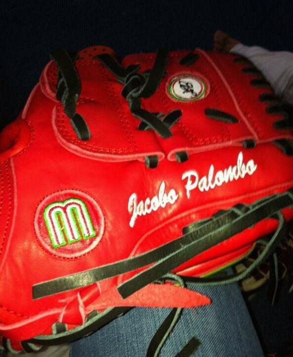 manopla Palombo17